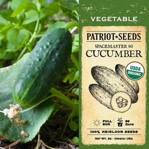 Organic Spacemaster 80 Cucumber Seeds (2g) - My Patriot Supply