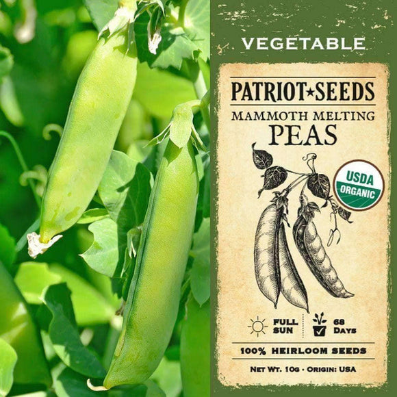 Organic Mammoth Melting Pea Seeds (10g) - My Patriot Supply