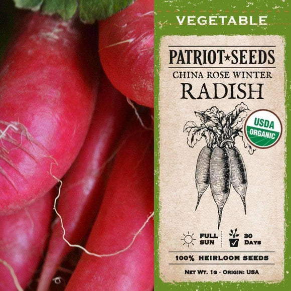 Organic China Rose Winter Radish Seeds (1g) - My Patriot Supply