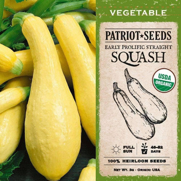 Organic Early Prolific Straightneck Summer Squash Seeds (3g) - My Patriot Supply