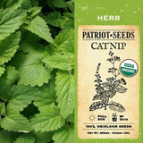 Organic Catnip Herb Seeds (250mg) - My Patriot Supply