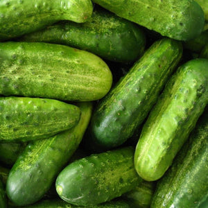 National Pickling Cucumber Seeds (3g) - My Patriot Supply