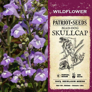 Mad-dog Skullcap Herb Seeds (500mg) - My Patriot Supply