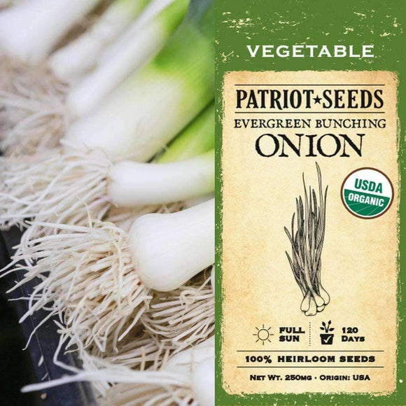 Organic Evergreen Bunching Onion Seeds (250mg) - My Patriot Supply