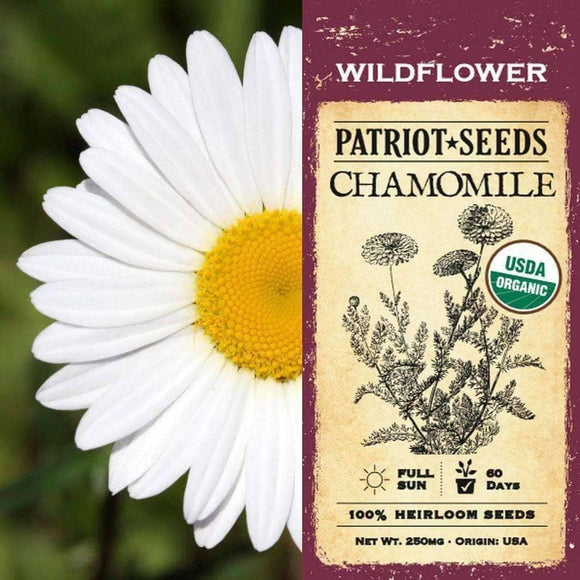 Organic Chamomile Herb Seeds (250mg) - My Patriot Supply