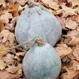 Organic Hubbard Blue Winter Squash Seeds (7g) - My Patriot Supply