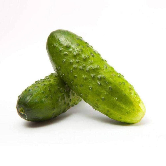 Boston Pickling Cucumber Seeds (3g) - My Patriot Supply