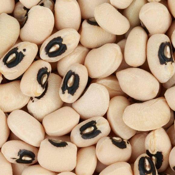Black Eyed Pea Seeds (22g) - My Patriot Supply