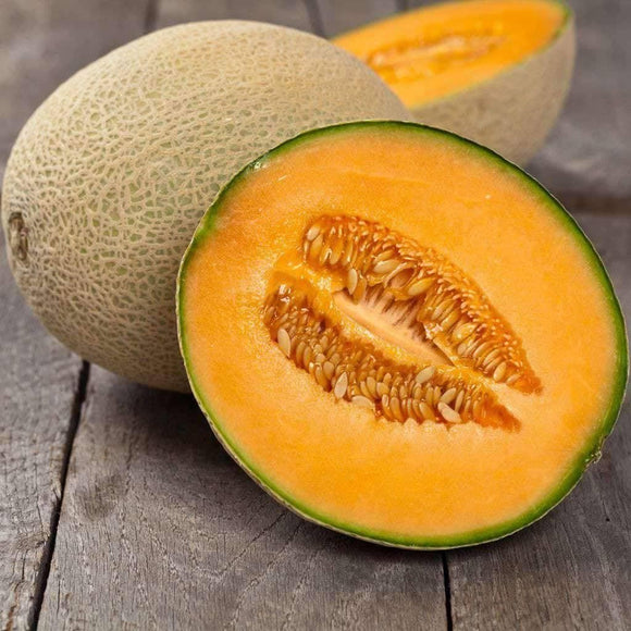 Iroquois Cantaloupe Seeds (2g) - My Patriot Supply