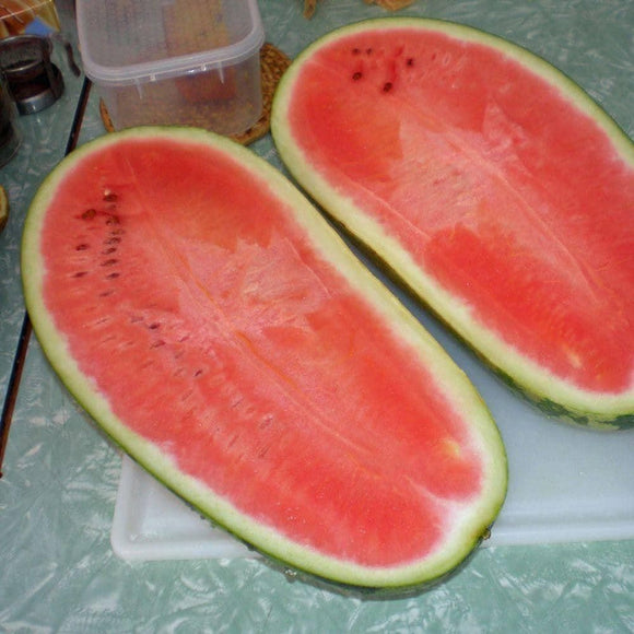 Charleston Gray Watermelon Seeds (3g)