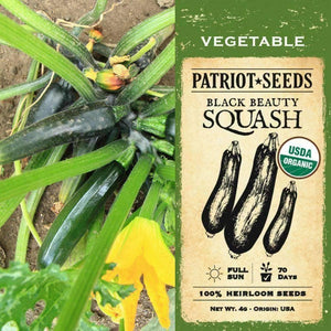 Organic Black Beauty Summer Squash Seeds (4g) - My Patriot Supply