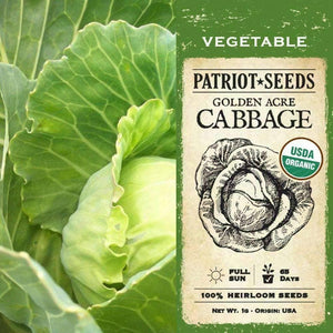 Organic Golden Acre Cabbage Seeds (1g) - My Patriot Supply