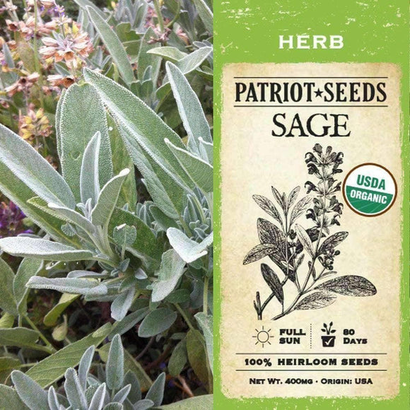 Organic Sage Herb Seeds (400mg) - My Patriot Supply