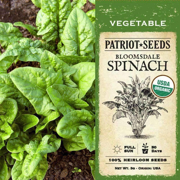 Organic Bloomsdale Spinach Seeds (3g) - My Patriot Supply