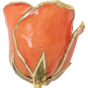Giacobbe & Company Lacquered Orange Rose With Gold Trim