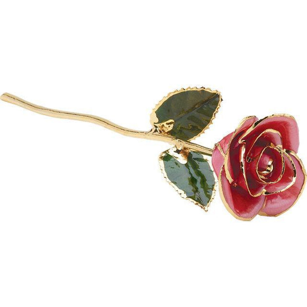 Giacobbe & Company Lacquered Pink Rose With Gold Trim
