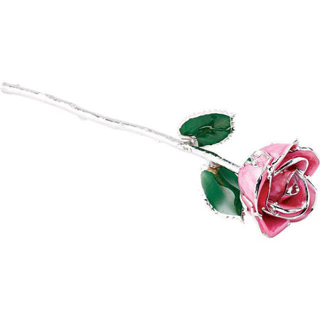 Giacobbe & Company Lacquered Pink Rose With Platinum Trim
