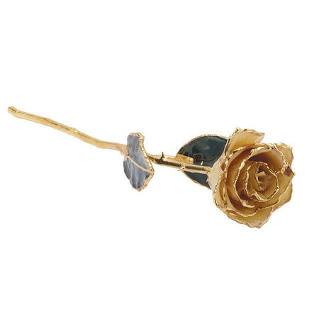 Giacobbe & Company Lacquered White Rose With Gold Trim