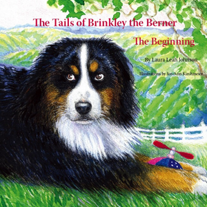 Tails of Brinkley the Berner