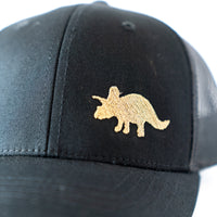 Triceratops Dinosaur Youth Hat, fits most kids/toddlers.