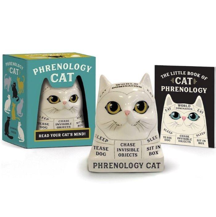 Mini Phrenology Cat
