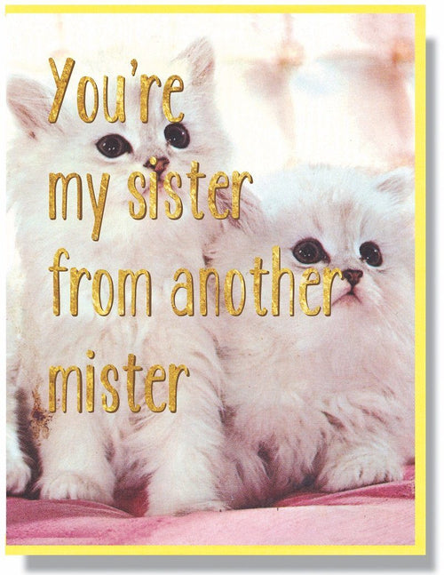 You're My Sister From Another Mister Card - Smitten Kitten - AlwaysFits.com