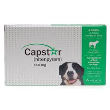 Capstar (6 Tablet Pack)