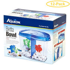 BETTA BOWL STARTER KIT 1/2 GAL
