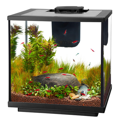 Aqueon 7.5G LED Shrimp Aquarium Kit