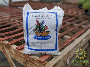 Dutch Treat Cactus Soil
