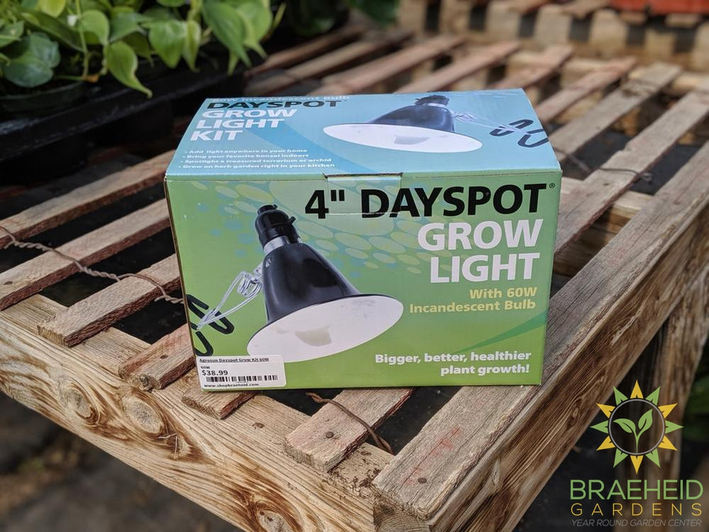 Agrosun Dayspot Grow Kits