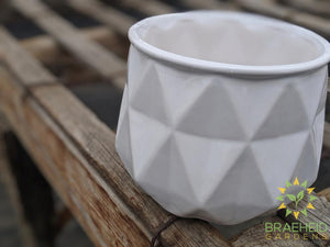 Megan Gloss Ceramic Planter
