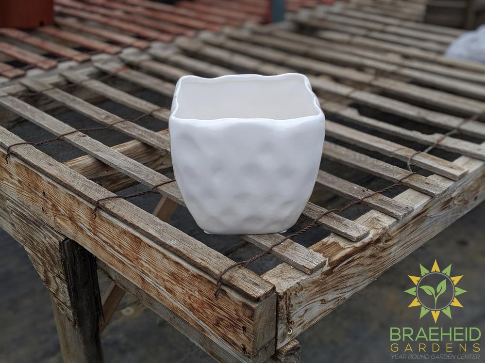 Alpine White Ceramic Square