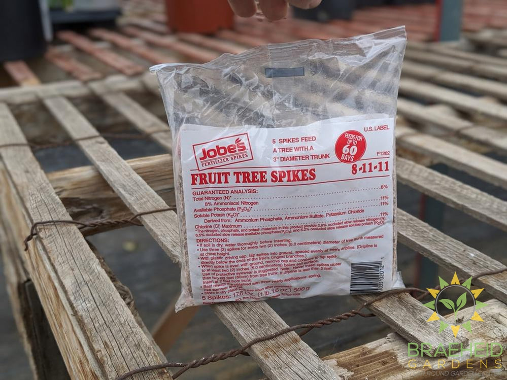 Jobes Fruit Tree Spike