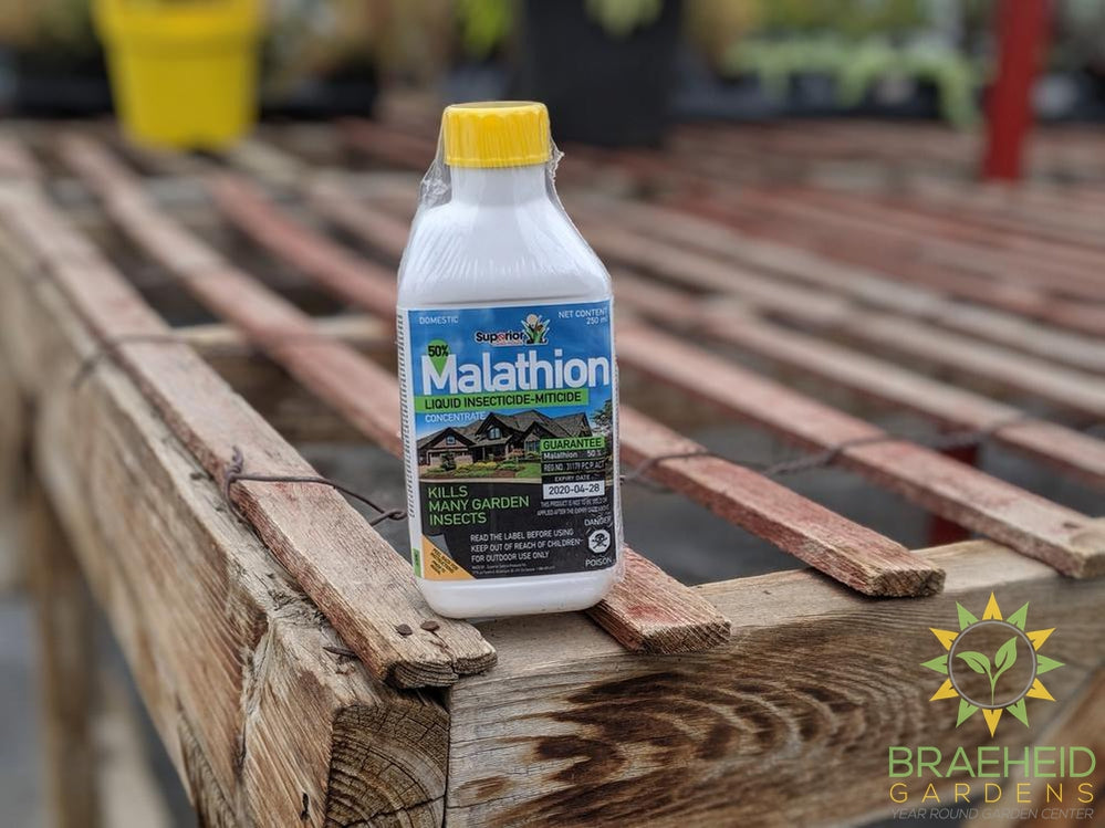 Wilson Malathion Insecticide Concentrate
