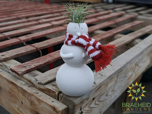 Jolly Snowman Planter