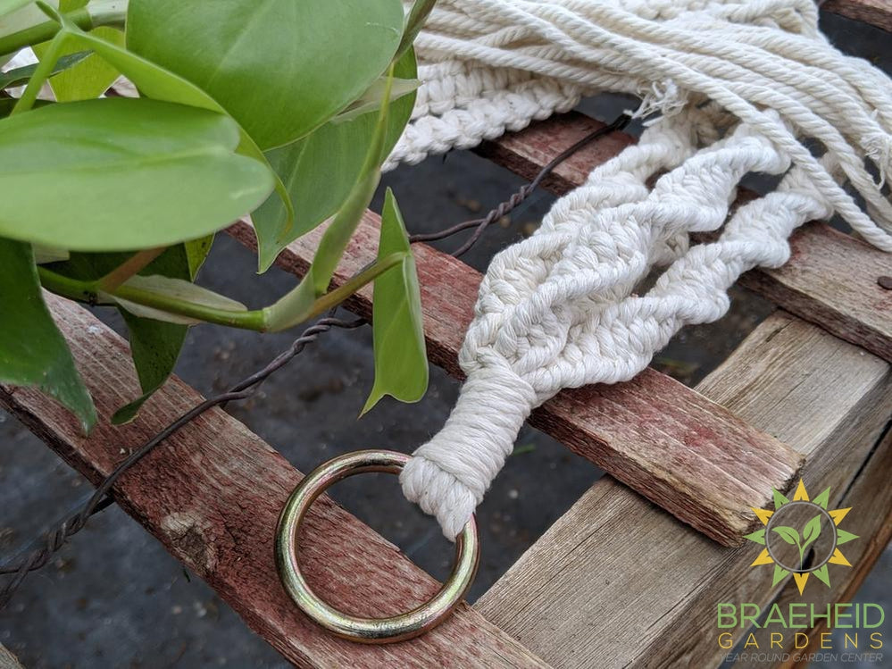 Morgan Creek Macrame Plant Hanger