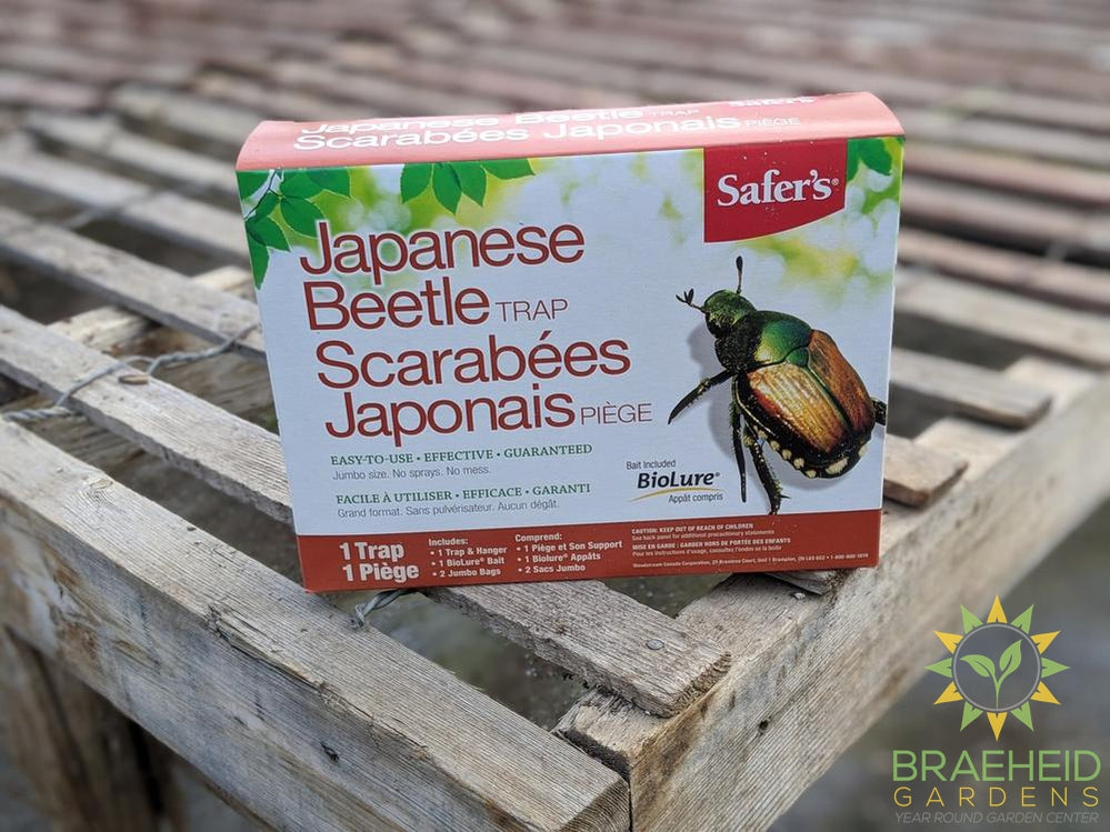 Safer's Japanese Beetle Trap