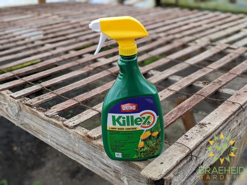 ORTHO Killex Lawn Weed Killer Ready to use