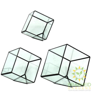 Empty Cube Glass Terrarium