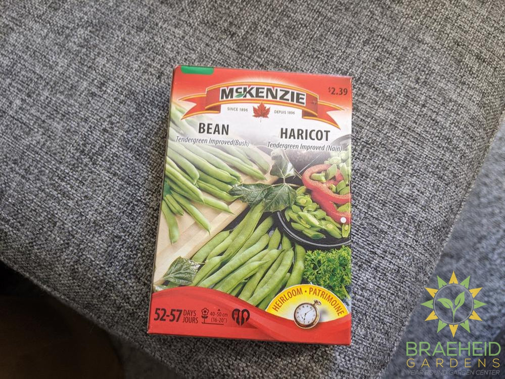 Tendergreen Improved (Bush) Bean McKenzie Seed