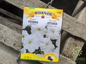 Petunia White Easy Wave McKenzie Seed