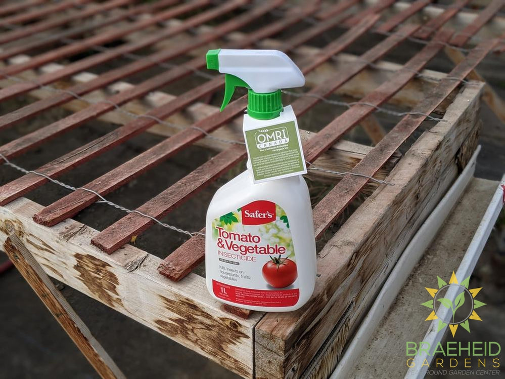 Safer's Tomato & Vegetable Insecticide RTU