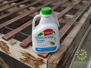 Safer's Insecticidal Soap Concentrate