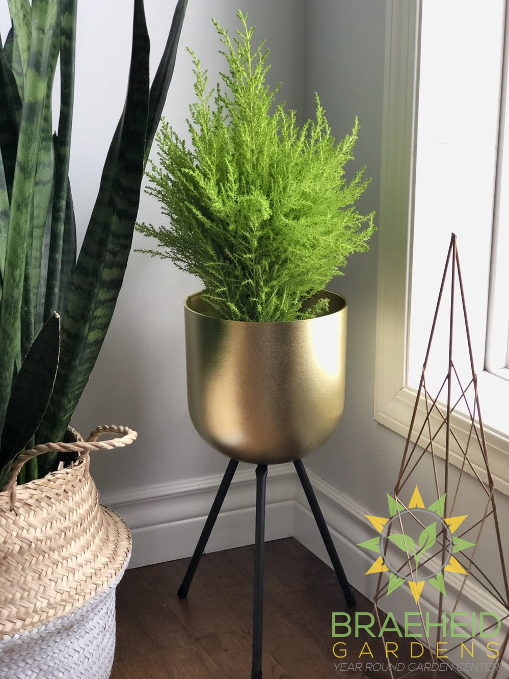 Gold 6″Pot Plant Stand