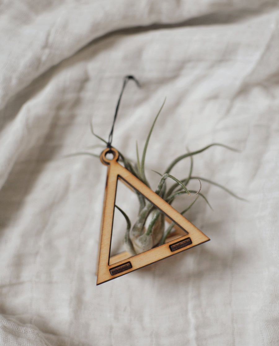Savvie Studio Mini Air Plant Holder