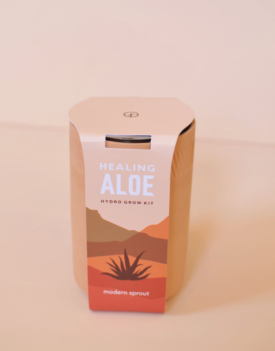 Terracotta Aloe Kit