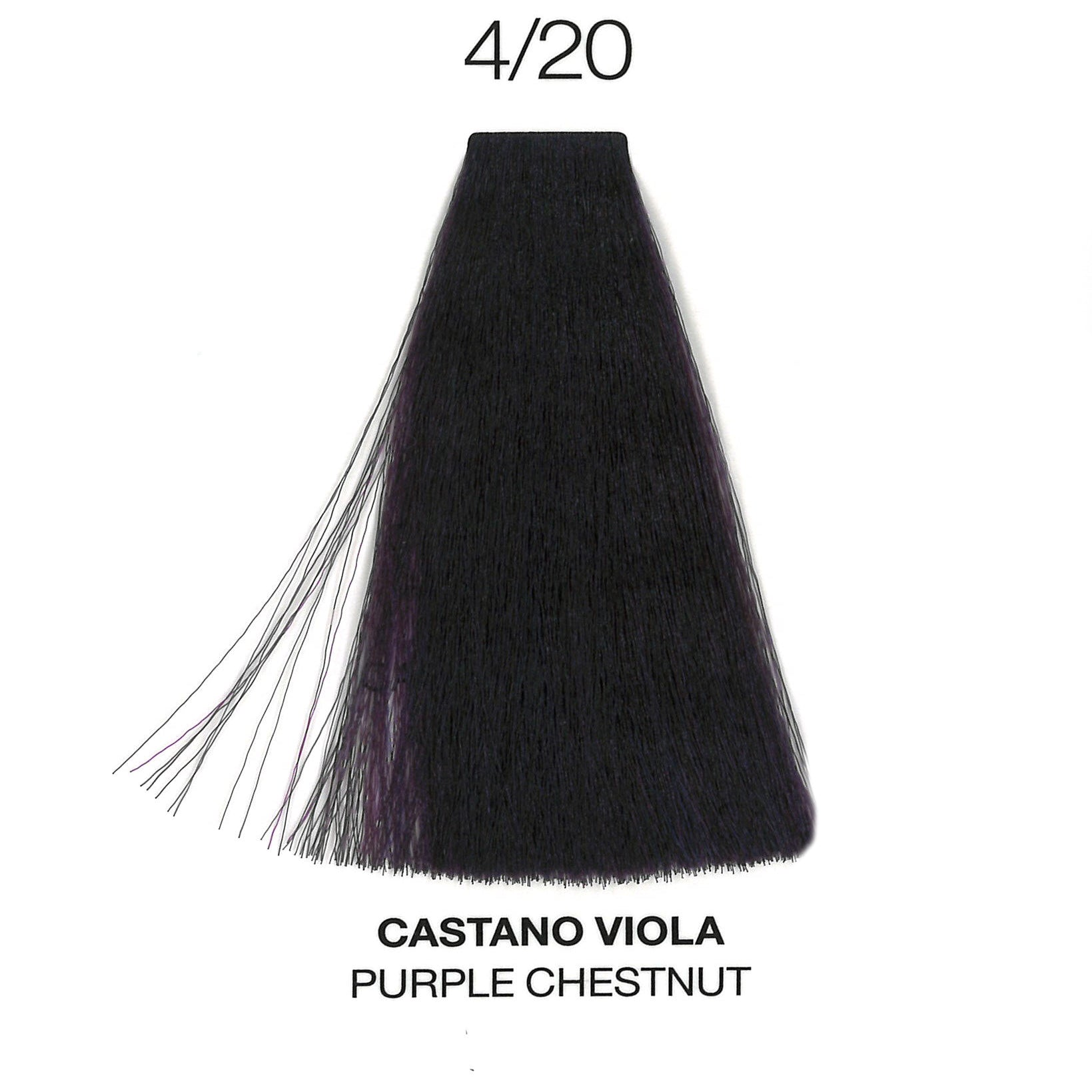 4/20 Purple Chestnut | Purity | Ammonia-Free Permanent Hair Color | OYSTER | SHSalons.com