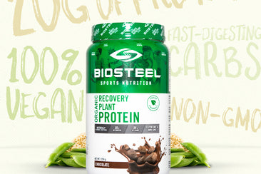 Plant-Based Protein : What Are Your Options?
