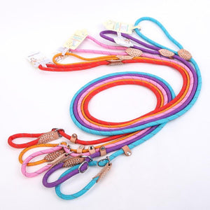Heavy Duty Rope Slip Leash